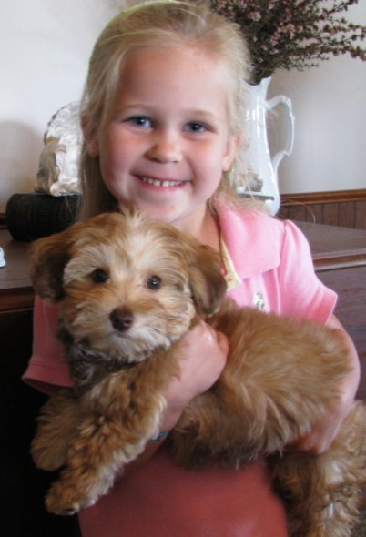 Gipe family's dog, CJ with Chrissy