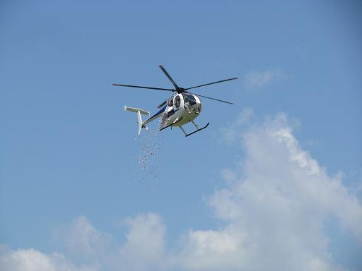 Here comes the candy from the copter!